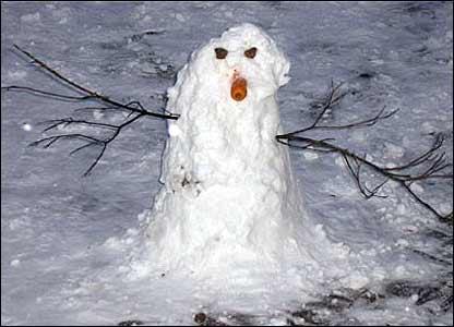 Snowman in Warwick