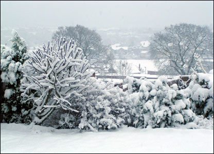 Snow in Caerphilly by Sean Stevenson