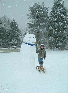 More a snowbear than a snowman, with Owain in Whitelye, Catbrook, Monmoutshire. PhotoL Doug Mayo