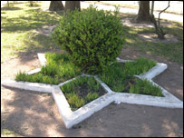 Well-tended flowerbeds form a Star of David in Moises Ville
