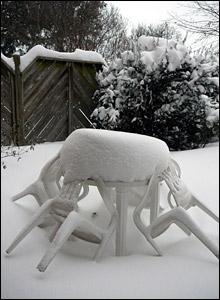 Snowfall in Hamilton, Ontario: photo from Tricia Ward
