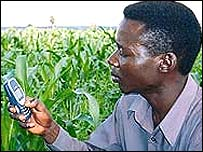 Farmer in Africa uses mobile phone to gather information