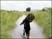 A farmer and refugee from the Zambezi River floods carries reeds as he wades through water in Caia, northern Mozambique (file picture)