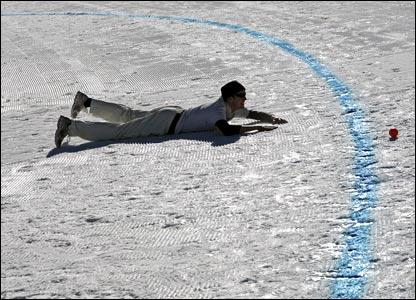 Ice cricket