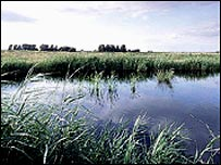 Lakenheath Fen nature reserve (RSPB)