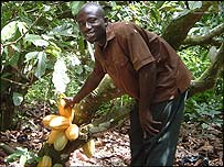 Cocoa farmer William Korampong