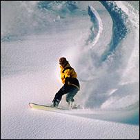 Snowboarder. Image: Eyewire