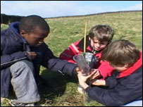Pupils plant the new forest