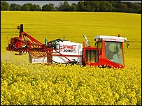 Insecticide being sprayed on to a field of oil seed rape (Image: BBC)