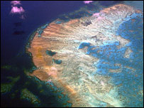 An aerial view of the Great Barrier Reef (file image)