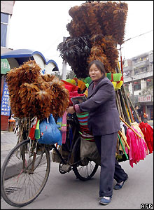 Feather duster seller in Chengdu, China