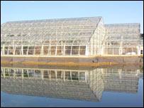 Wisley glasshouse
