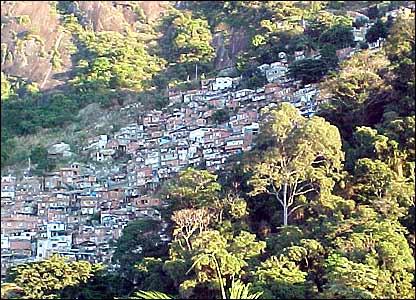 Favela Santa Marta en Rio de Janeiro rodeada de �rboles