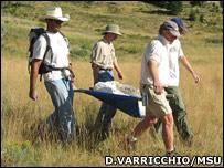 Removing the fossils (David Varricchio/MSU)