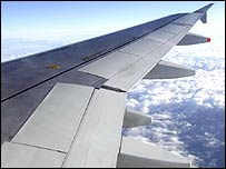 Plane's wing