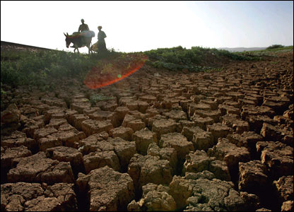 (Image: FAO/Giulio Napolitano)