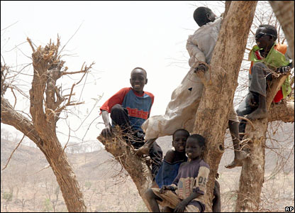 Children in a tree at a refugee camp in eastern Chad