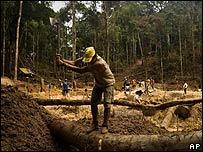 Obrero tumbando selva en Brasil