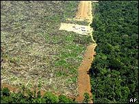 Zona deforestada en Brasil