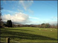 Welsh scene