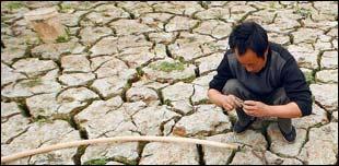 صورة لمزارع في أرض جدباء