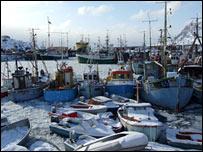 Sisimiut harbour