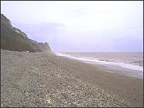 Cleaned stretch of Branscombe Beach