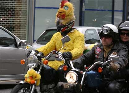 Chicken biker (Picture by Scott McInnes)