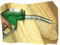 Fuel dispenser and corn
