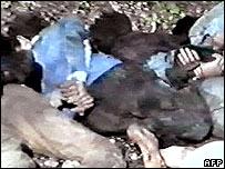 Bodies at Srebrenica