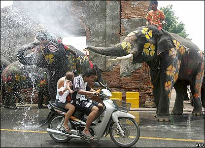 Elephants spray water on people during a festival to mark Songkran, or Thai New Year