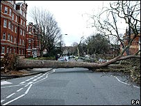 Storm damage in London