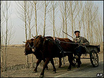 Farmer in China (file photo)