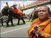 Buddhist monk walks alongside elephants during march in Bangkok - 25/04/07