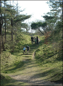 One of Rob Lyon's favourite views at Pembrey where the woods meet the dunes