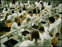 Students in a laboratory (Image: Science Photo Library)