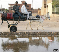 Water sellers on donkey carriage, Khartoum