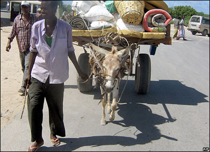 A man returns to Mogadishu with his belongings on a donkey cart