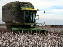 Cotton-picking machine in Texas