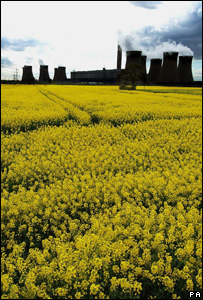 Field of rape seed in front of a power station