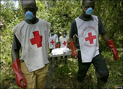 Cameroon Red Cross rescuers carry a body