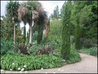 The Mediterranean Garden, Regent's Park