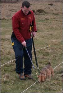 Gavin Roberts and his dog Gelert