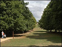 A park in Letchworth Garden City (Credit: Letchworth Garden City Heritage Foundation)