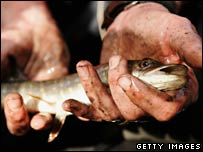 Pike from Pudding Mill River (Getty Images)