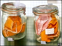 Stasi odour sample jars