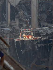 A rescue dog being brought out of the debris of the World Trade Centre after the 9/11 attacks, New York, 2001.