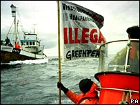 Protest against whaling
