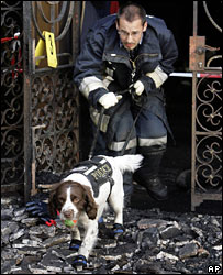 A policeman and a sniffer dog investigate the burnt out synagogue in Geneva (25-05-07)