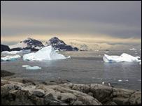 Айсберги в у побережья Антарктиды